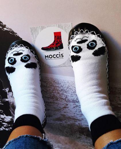 moccis7.JPG